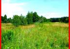 Działka na sprzedaż, Borki, 5000 m² | Morizon.pl | 8822 nr5