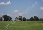 Morizon WP ogłoszenia | Działka na sprzedaż, Kotowice, 10000 m² | 5711