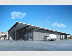 Działka na sprzedaż, Bieniewo-Parcela, 27573 m²