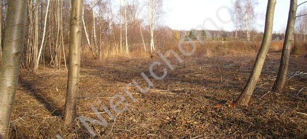 Działka na sprzedaż 5800 m² Pruszkowski Kanie - zdjęcie 3