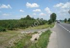 Morizon WP ogłoszenia | Działka na sprzedaż, Grójec, 23200 m² | 9943