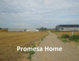 Morizon WP ogłoszenia | Działka na sprzedaż, Sękowo, 3000 m² | 6833