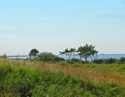 Morizon WP ogłoszenia   Działka na sprzedaż, Sarbinowo, 1000 m²   6118