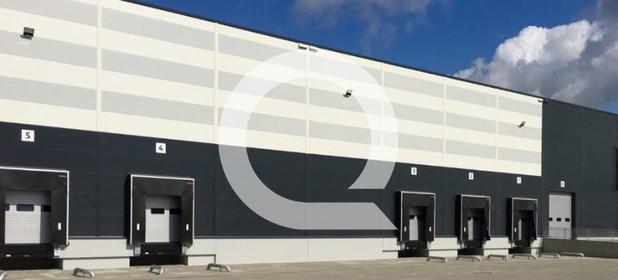 Magazyn, hala do wynajęcia 7560 m² Międzyrzecki Przytoczna Rokitno - zdjęcie 1