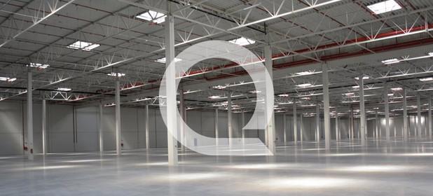 Magazyn, hala do wynajęcia 7560 m² Międzyrzecki Przytoczna Rokitno - zdjęcie 2