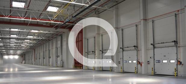 Magazyn, hala do wynajęcia 7560 m² Międzyrzecki Przytoczna Rokitno - zdjęcie 3