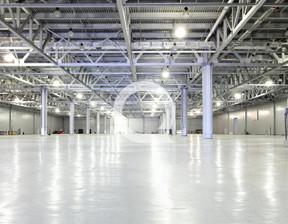 Magazyn, hala do wynajęcia, Smolice, 7150 m²