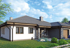 Morizon WP ogłoszenia | Dom w inwestycji Osiedle Rozalin, Lusówko, 138 m² | 3371