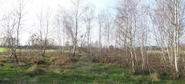 Działka na sprzedaż 9000 m² Sochaczewski Sochaczew Mokas Białowiejska - zdjęcie 2