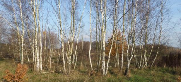 Działka na sprzedaż 9000 m² Sochaczewski Sochaczew Mokas Białowiejska - zdjęcie 1