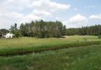 Działka na sprzedaż, Śladów, 6200 m²   Morizon.pl   5789 nr11