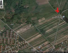 Działka na sprzedaż, Bielawa, 7389 m²