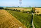Działka na sprzedaż, Hażlach, 12300 m²   Morizon.pl   8135 nr3