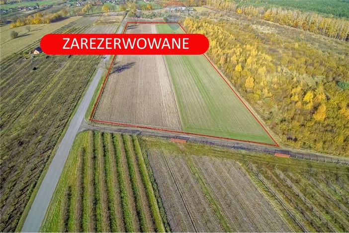 Działka na sprzedaż, Wyskoki, 23783 m² | Morizon.pl | 2997