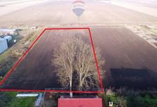Działka na sprzedaż, Kurznie, 3000 m²