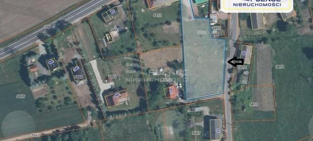 Działka do wynajęcia 2500 m² Bolesławiecki Nowogrodziec Czerna - zdjęcie 1