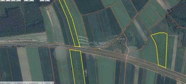 Działka na sprzedaż 118000 m² Bolesławiecki Warta Bolesławiecka Szczytnica - zdjęcie 2