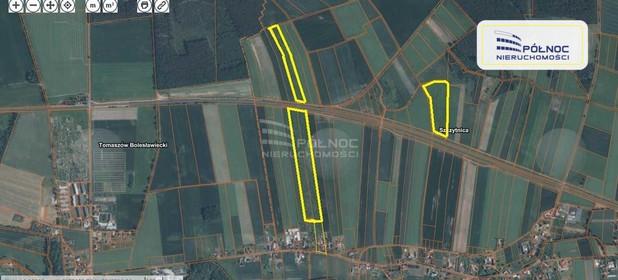 Działka na sprzedaż 118000 m² Bolesławiecki Warta Bolesławiecka Szczytnica - zdjęcie 1