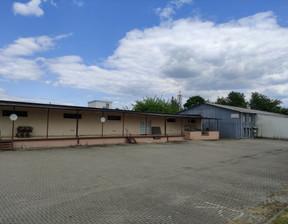 Przemysłowy na sprzedaż, Lublin Tatary, 3832 m²
