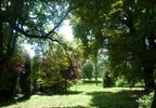 Dom na sprzedaż, Popowo Kościelne, 650 m²   Morizon.pl   9995 nr2