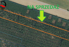 Działka na sprzedaż, Wierzbinek, 25100 m²