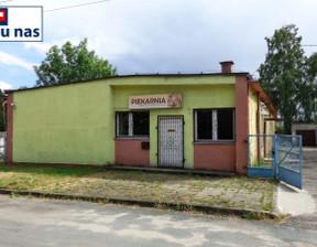 Fabryka, zakład na sprzedaż, Leszno Górne Szkolna, 300 m²
