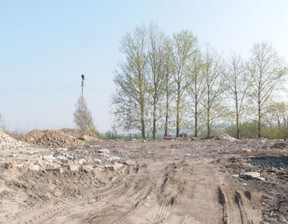 Działka na sprzedaż, Dzierżoniów, 26039 m²