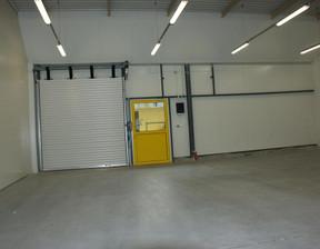 Magazyn, hala do wynajęcia, Poznań, 800 m²