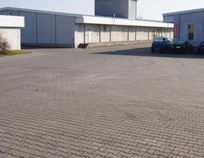 Biuro do wynajęcia, Środa Wielkopolska, 1000 m²