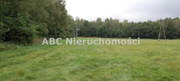 Działka na sprzedaż 17200 m² Złotowski Tarnówka Płytnica - zdjęcie 3