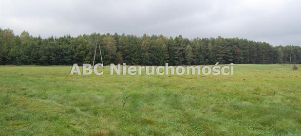 Działka na sprzedaż 28000 m² Złotowski Tarnówka Płytnica - zdjęcie 3