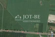 Działka na sprzedaż, Źródła, 37677 m²