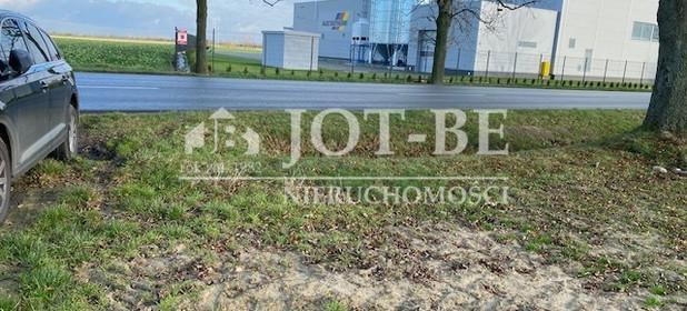 Działka na sprzedaż 9999 m² Brzeski Grodków Wrocławska - zdjęcie 2