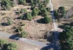 Działka na sprzedaż, Szymanówek, 3186 m² | Morizon.pl | 1413 nr10