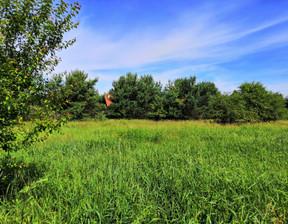 Działka na sprzedaż, Zwierzewo, 1353 m²