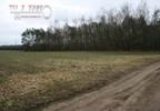 Działka na sprzedaż, Pałczew, 15000 m² | Morizon.pl | 8364 nr4