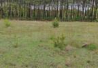 Działka na sprzedaż, Warszówka, 12200 m² | Morizon.pl | 7395 nr11