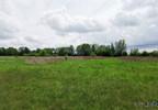 Działka na sprzedaż, Warszówka, 12200 m² | Morizon.pl | 7395 nr5