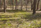 Działka na sprzedaż, Nowe Kościeliska, 15000 m² | Morizon.pl | 8330 nr3