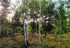Działka na sprzedaż, Lisówko, 9200 m²   Morizon.pl   2768 nr5