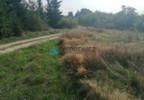 Działka na sprzedaż, Czarnylas, 5000 m² | Morizon.pl | 8271 nr6
