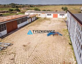 Magazyn na sprzedaż, Miłoradz Główna, 838 m²