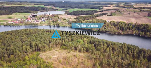 Działka na sprzedaż 10000 m² Bytowski Tuchomie Ciemno - zdjęcie 1