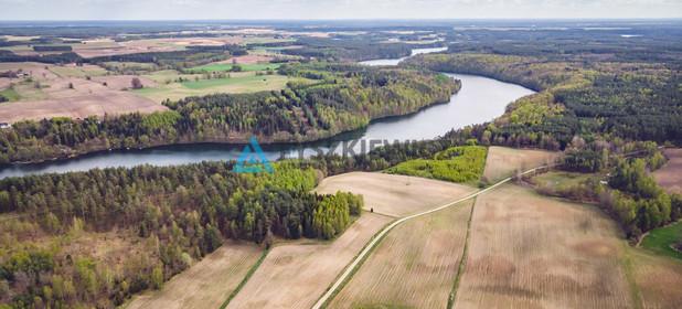 Działka na sprzedaż 10000 m² Bytowski Tuchomie Ciemno - zdjęcie 2