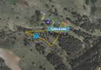 Działka na sprzedaż, Jaźwiska, 2000 m² | Morizon.pl | 6895 nr2