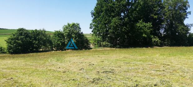 Działka na sprzedaż 4739 m² Bytowski Studzienice Półczno - zdjęcie 3