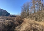 Działka na sprzedaż, Górki Wielkie Na Wzgórzu, 1207 m² | Morizon.pl | 8438 nr5