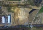 Działka na sprzedaż, Linowiec, 10000 m² | Morizon.pl | 3890 nr5
