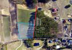 Działka na sprzedaż, Bytonia Krótka, 5300 m² | Morizon.pl | 2353 nr4