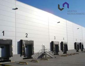 Magazyn, hala do wynajęcia, Rybnik, 7000 m²